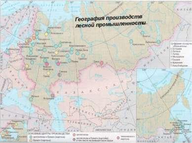 География производств лесной промышленности