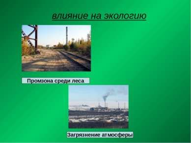влияние на экологию Промзона среди леса Загрязнение атмосферы