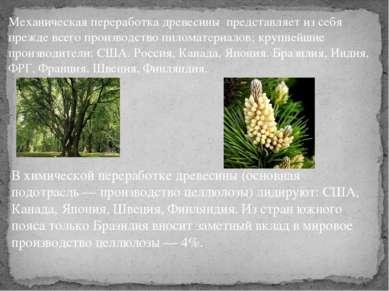 В химической переработке древесины (основная подотрасль — производство целлюл...