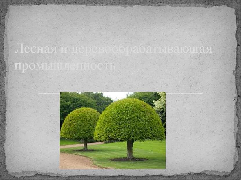 Лесная и деревообрабатывающая промышленность