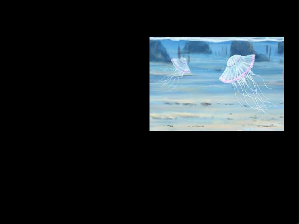 Медузоидные. Множество экземпляров являются маленькими, но известны так же эк...
