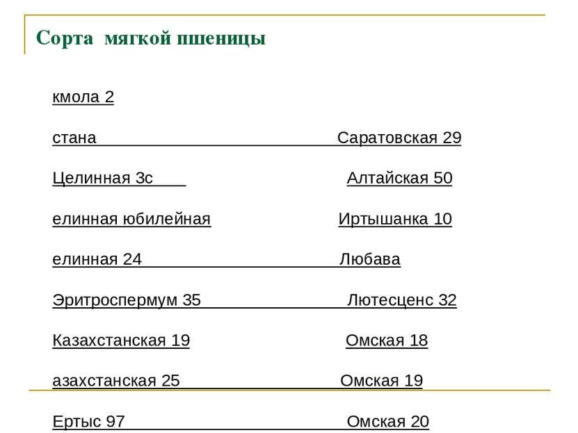 Сорта мягкой пшеницы Акмола 2 Астана Саратовская 29 Целинная 3с Алтайская 50 ...