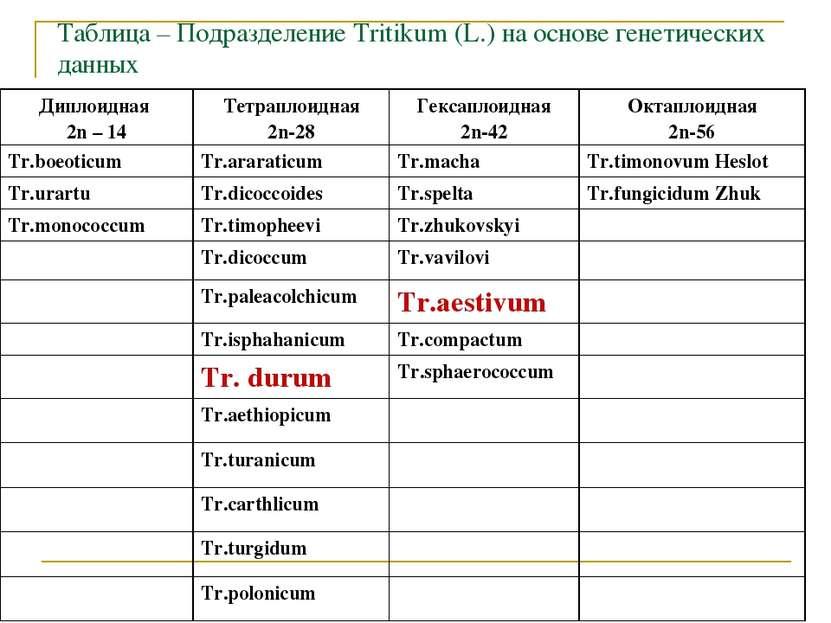 Таблица – Подразделение Tritikum (L.) на основе генетических данных Диплоидна...