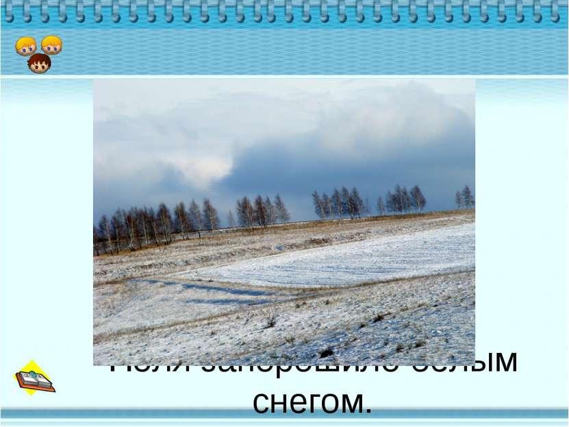Поля запорошило белым снегом.