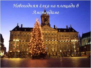 Новогодняя ёлка на площади в Амстердаме