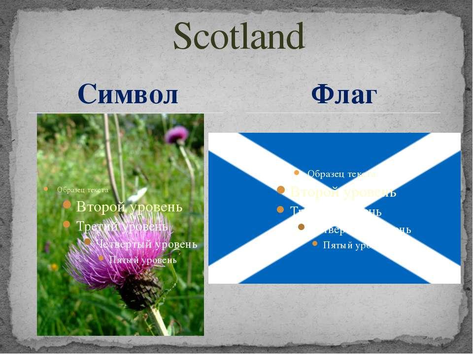 Scotland Символ Флаг