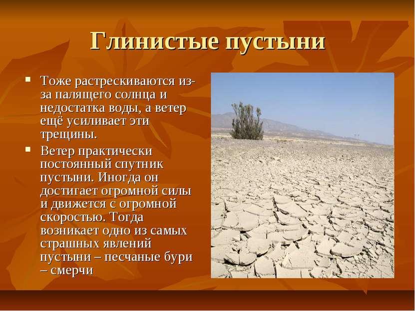 Глинистые пустыни Тоже растрескиваются из-за палящего солнца и недостатка вод...