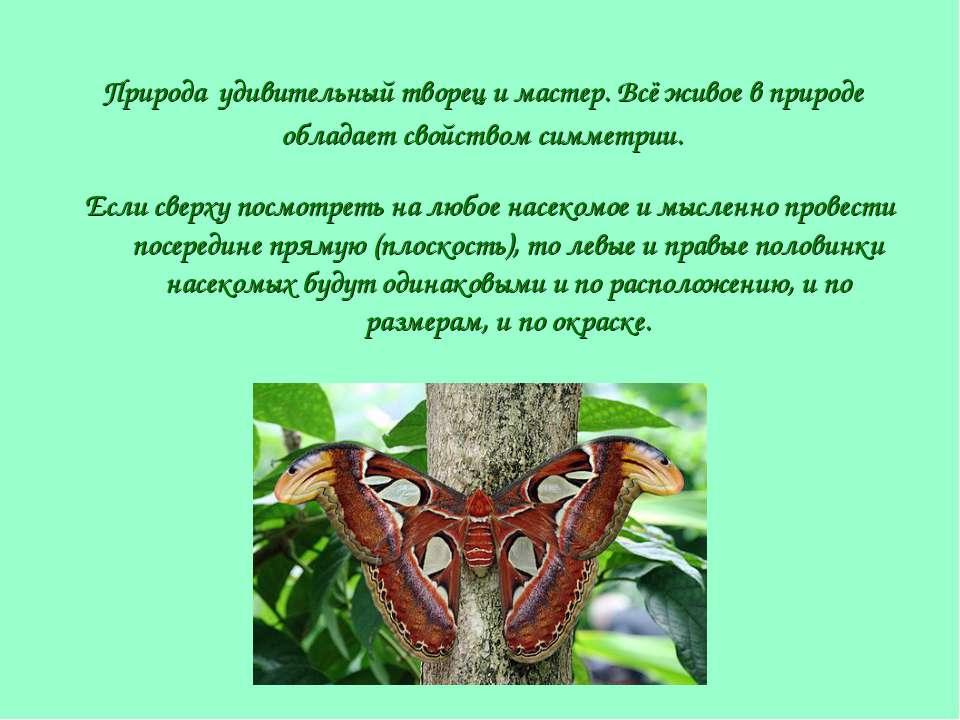 Природа удивительный творец и мастер. Всё живое в природе обладает свойством ...