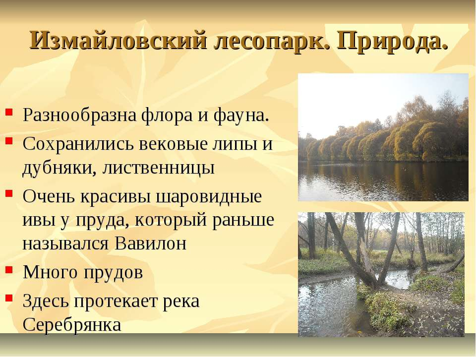 Измайловский лесопарк. Природа. Разнообразна флора и фауна. Сохранились веков...