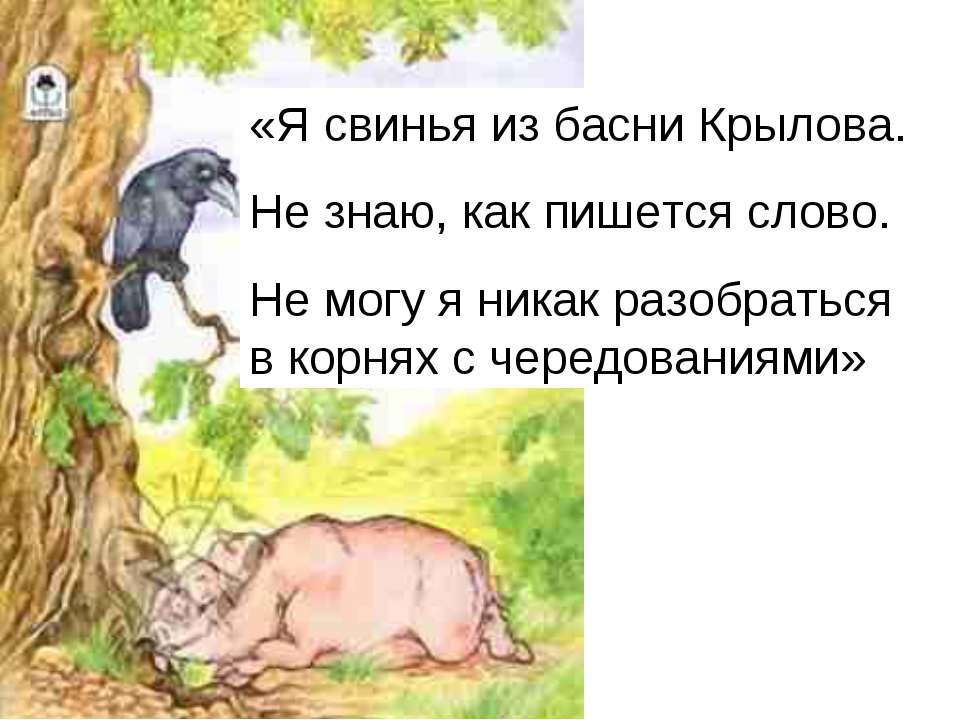 «Я свинья из басни Крылова. Не знаю, как пишется слово. Не могу я никак разоб...