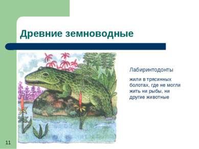 Древние земноводные Лабиринтодонты жили в трясинных болотах, где не могли жит...