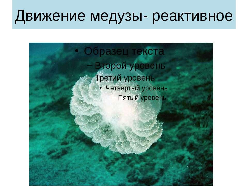 Движение медузы- реактивное