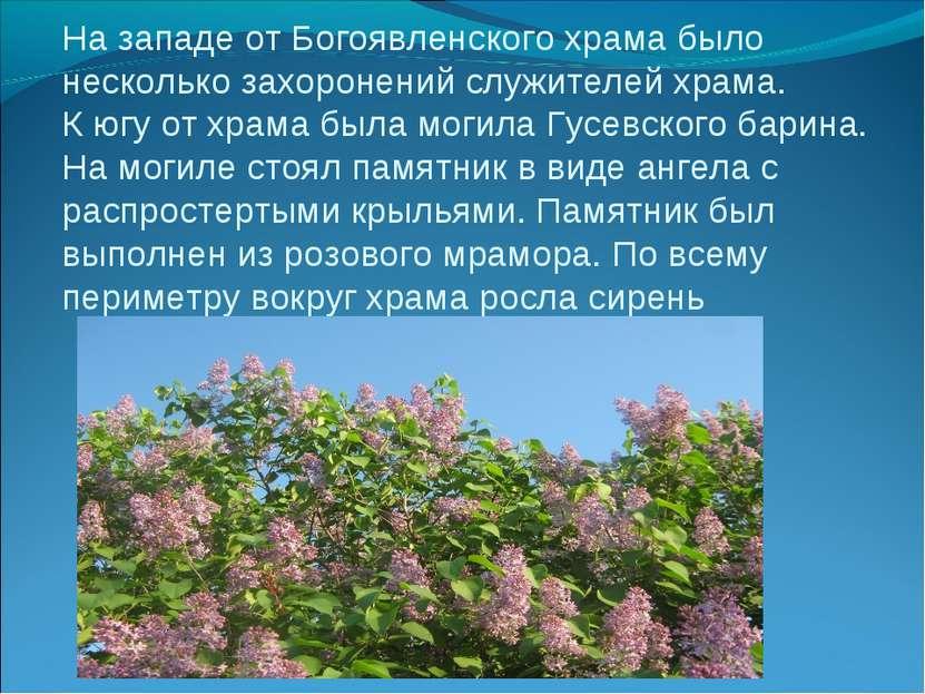 На западе от Богоявленского храма было несколько захоронений служителей храма...