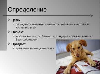 Определение Цель определить значение и важность домашних животных в жизни анг...