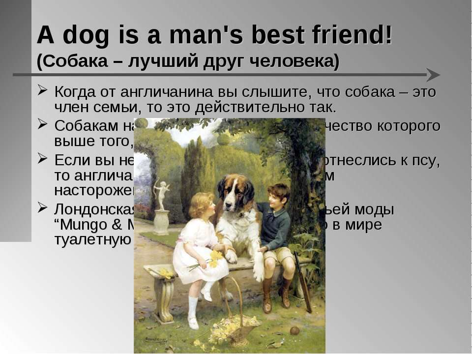 A dog is a man's best friend! (Собака – лучший друг человека) Когда от англич...
