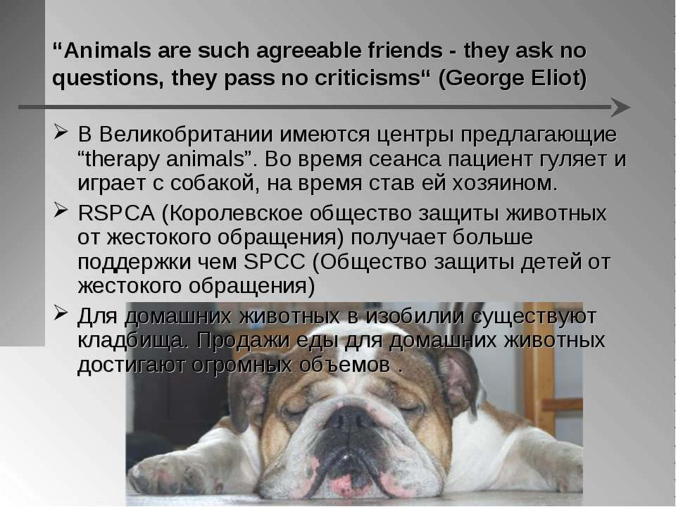 """Animals are such agreeable friends - they ask no questions, they pass no cri..."