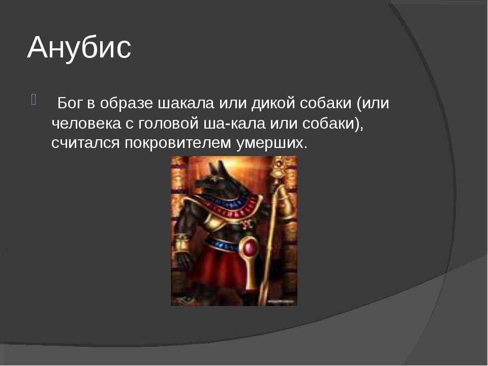 Анубис Бог в образе шакала или дикой собаки (или человека с головой ша кала ...