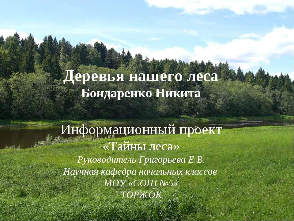 Деревья нашего леса Бондаренко Никита Информационный проект «Тайны леса» Руко...