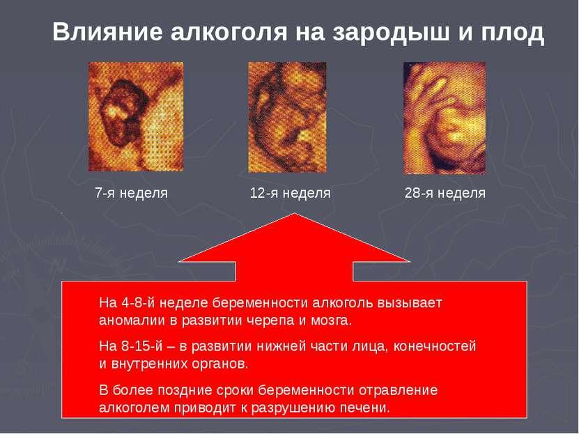 7-я неделя 12-я неделя 28-я неделя Влияние алкоголя на зародыш и плод На 4-8-...