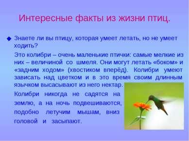 Интересные факты из жизни птиц. Знаете ли вы птицу, которая умеет летать, но ...