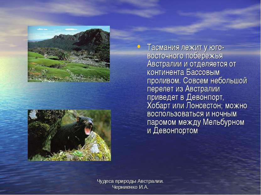 Чудеса природы Австралии. Черниенко И.А. Тасмания лежит у юго-восточного побе...