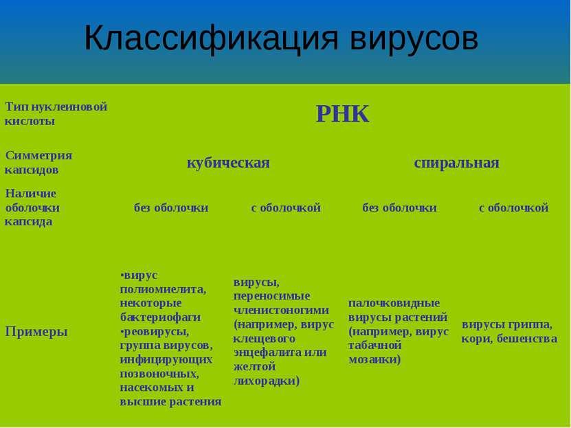 Классификация вирусов Тип нуклеиновой кислоты РНК Симметрия капсидов кубическ...