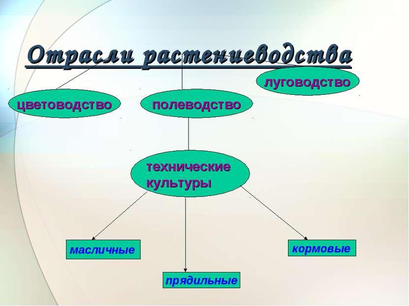 Использование межпредметных связей при подготовке к единому государственному экзамену по физике