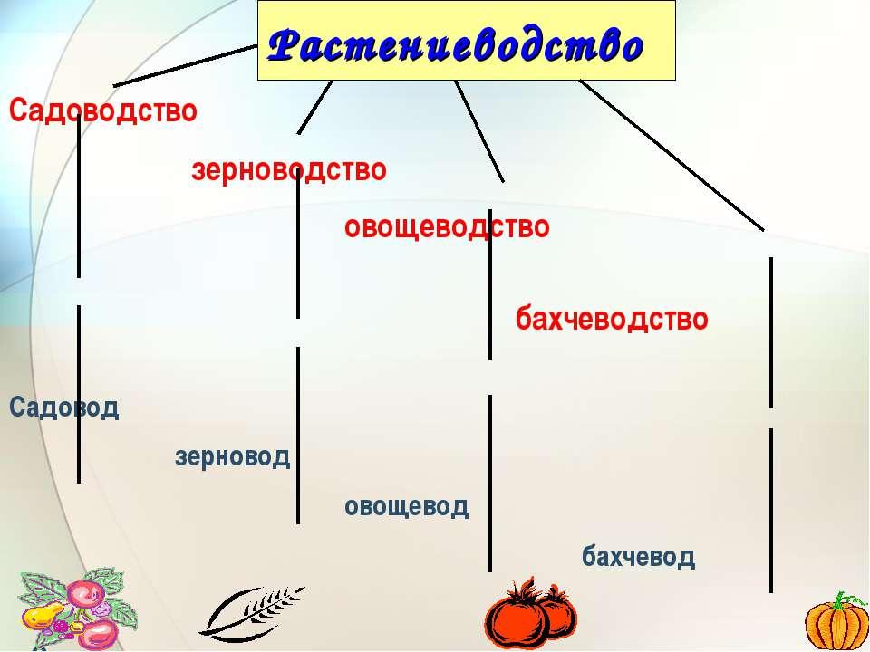Растениеводство Садоводство зерноводство овощеводство бахчеводство Садовод зе...