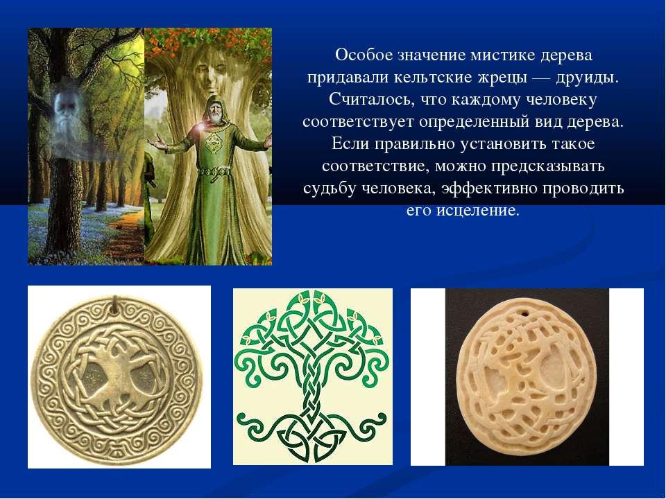 Особое значение мистике дерева придавали кельтские жрецы — друиды. Считалось,...
