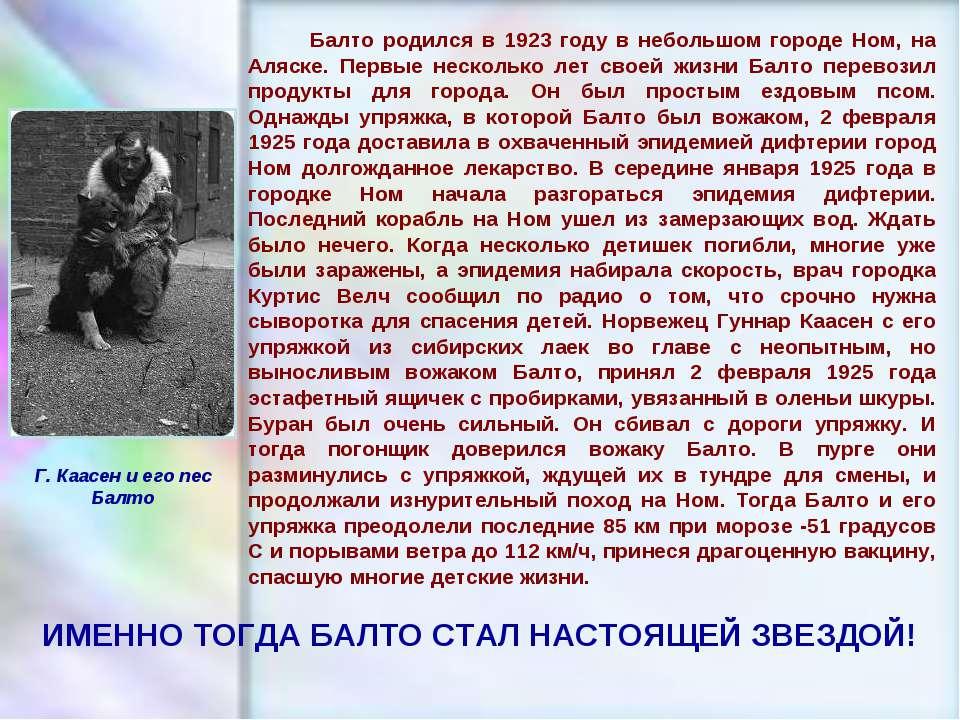 ЧУВАШСКАЯ РЕСПУБЛИКА, г. ШУМЕРЛЯ, МОУ «СОШ №2» Балто родился в 1923 году в не...