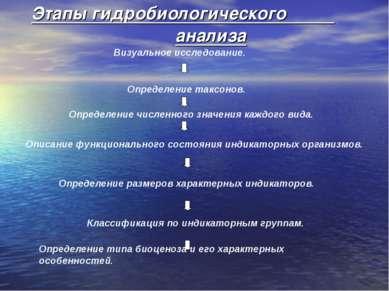 Этапы гидробиологического анализа. Визуальное исследование. Определение таксо...