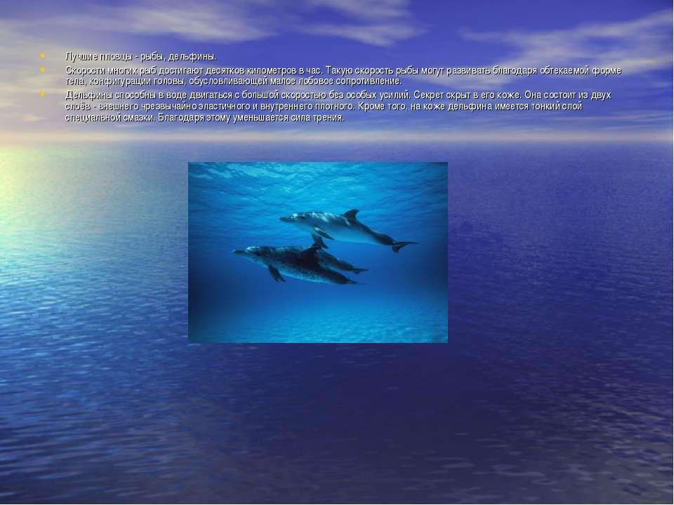 Лучшие пловцы - рыбы, дельфины. Скорости многих рыб достигают десятков киломе...