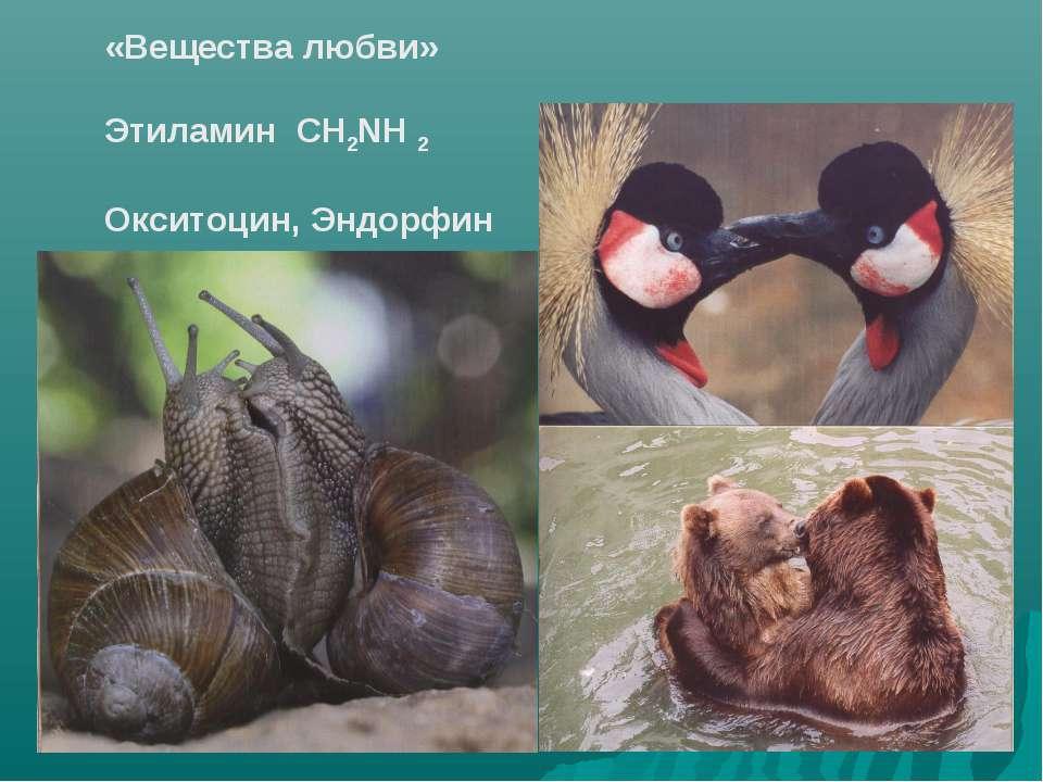 «Вещества любви» Этиламин CH2NH 2 Окситоцин, Эндорфин