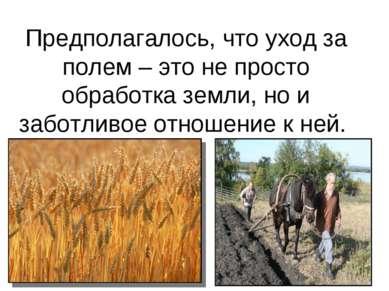 Предполагалось, что уход за полем – это не просто обработка земли, но и забот...