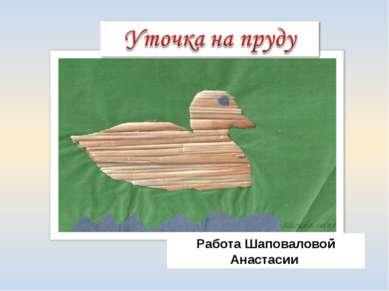 Работа Шаповаловой Анастасии
