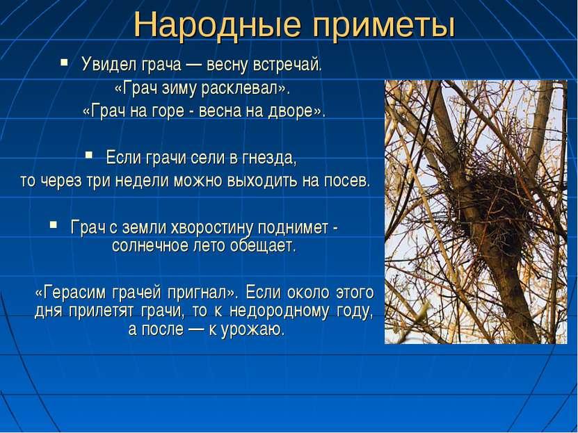 Народные приметы Увидел грача — весну встречай. «Грач зиму расклевал». «Грач ...