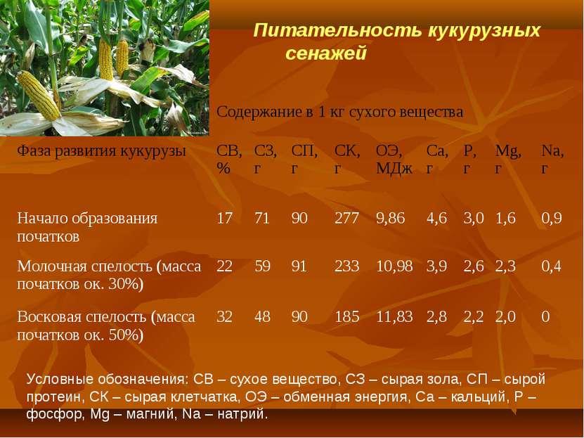 Питательность кукурузных сенажей Условные обозначения: СВ – сухое вещество, С...