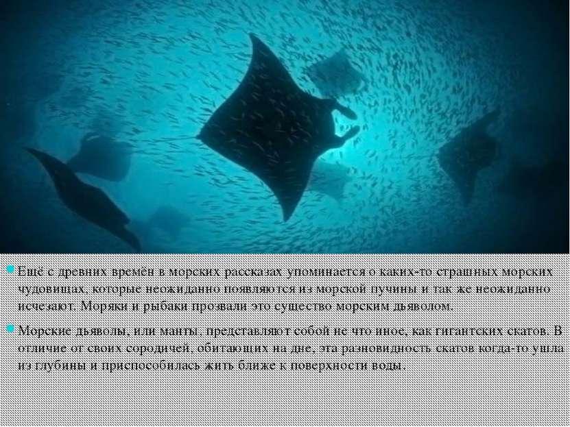 Ещё с древних времён в морских рассказах упоминается о каких-то страшных морс...