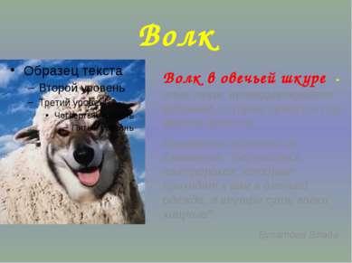Волк Волк в овечьей шкуре - злые люди, прикидывающиеся добрыми, которые прячу...