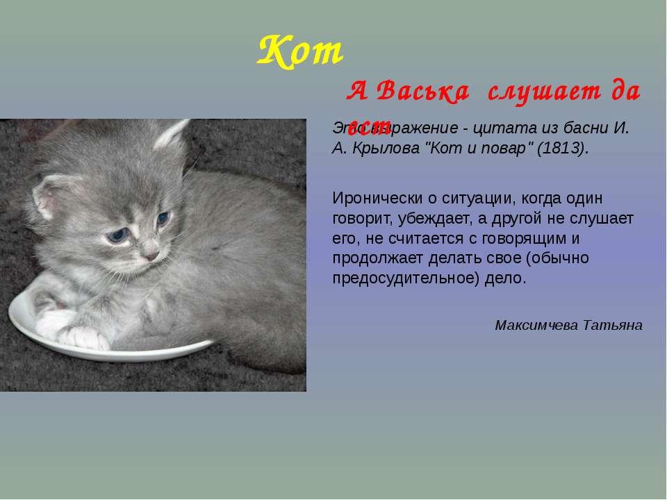 """Кот Это выражение - цитата из басни И. А. Крылова """"Кот и повар"""" (1813). Ирони..."""