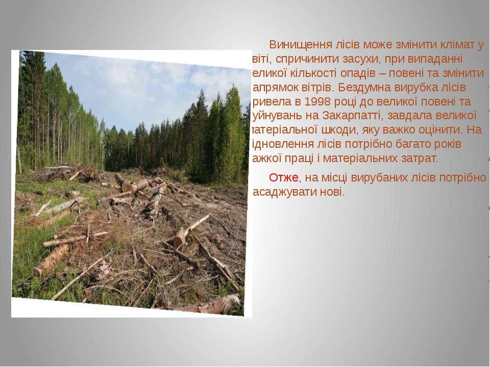 Винищення лісів може змінити клімат у світі, спричинити засухи, при випаданні...