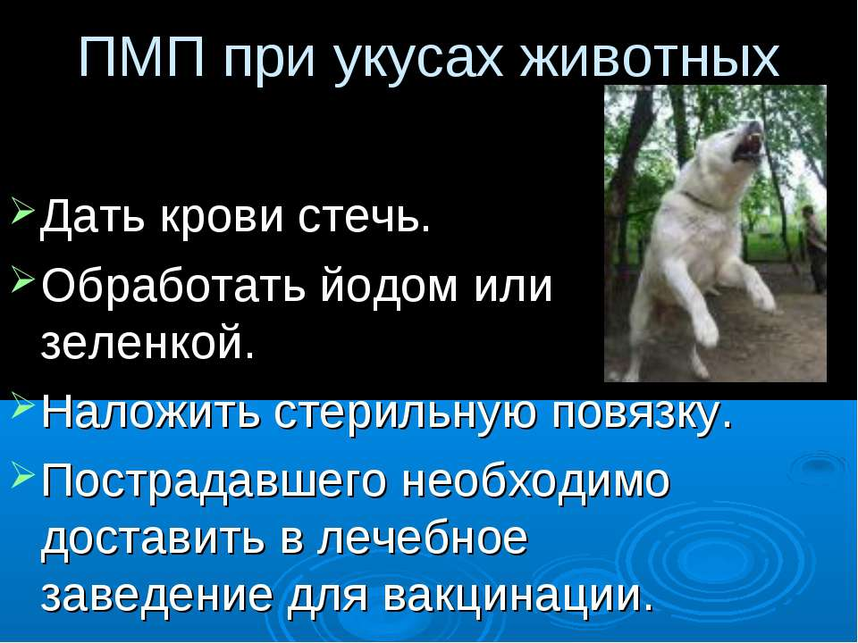 ПМП при укусах животных Дать крови стечь. Обработать йодом или зеленкой. Нало...