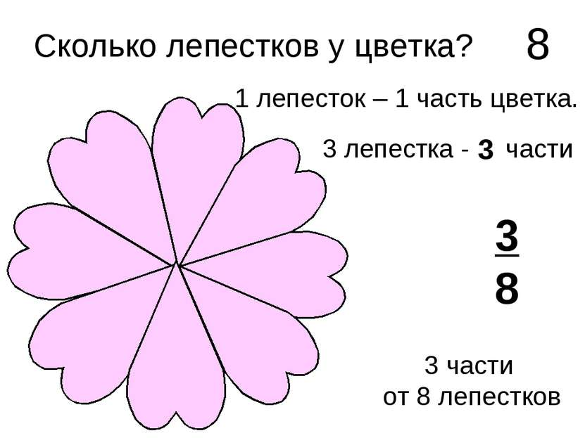Сколько лепестков у цветка? 8 1 лепесток – 1 часть цветка. 3 лепестка - ? час...
