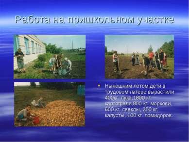 Работа на пришкольном участке Нынешним летом дети в трудовом лагере вырастили...