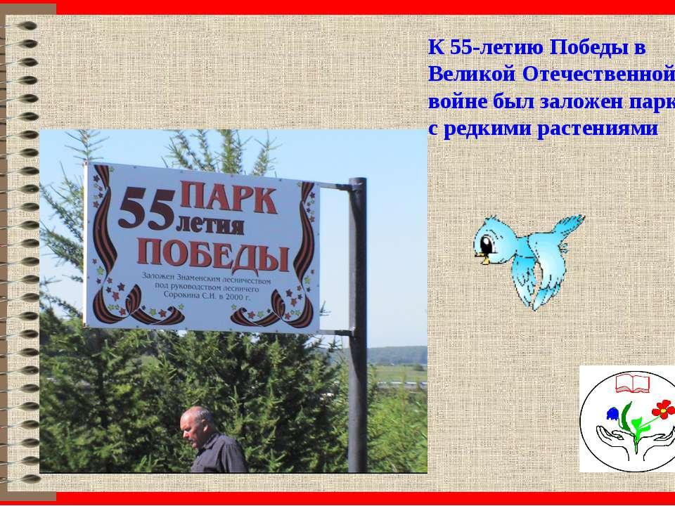 К 55-летию Победы в Великой Отечественной войне был заложен парк с редкими ра...