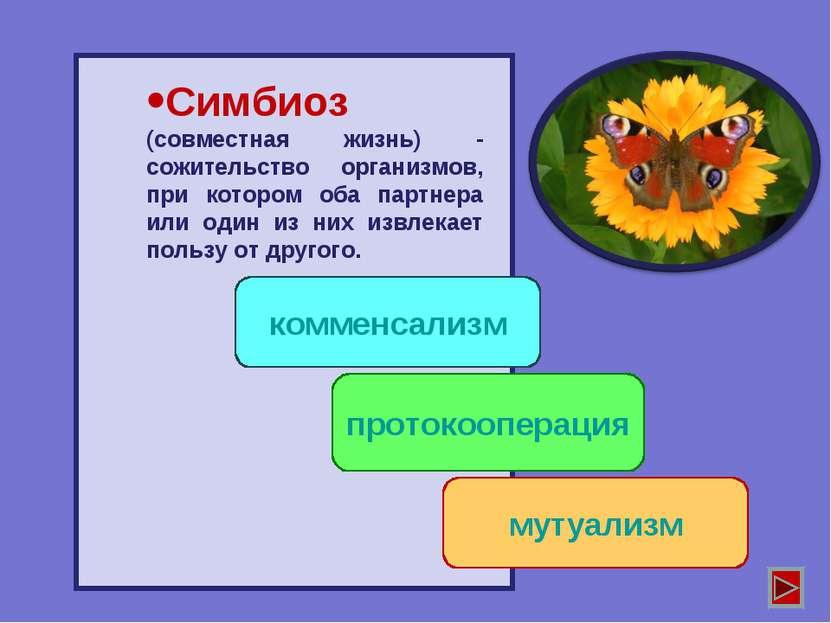 Симбиоз (совместная жизнь) - сожительство организмов, при котором оба партнер...