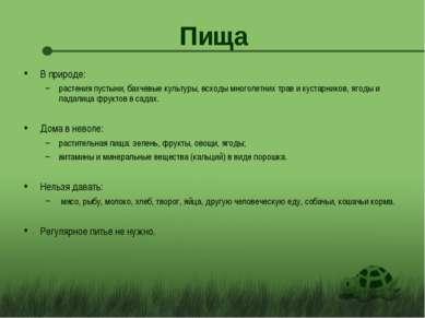 Пища В природе: растения пустыни, бахчевые культуры, всходы многолетних трав ...