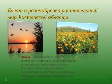 Богат и разнообразен растительный мир Ростовской области Флора - термин испо...