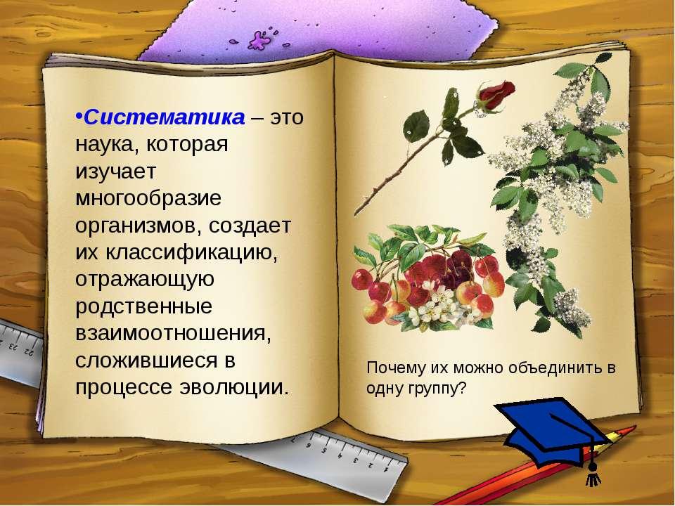 Систематика – это наука, которая изучает многообразие организмов, создает их ...