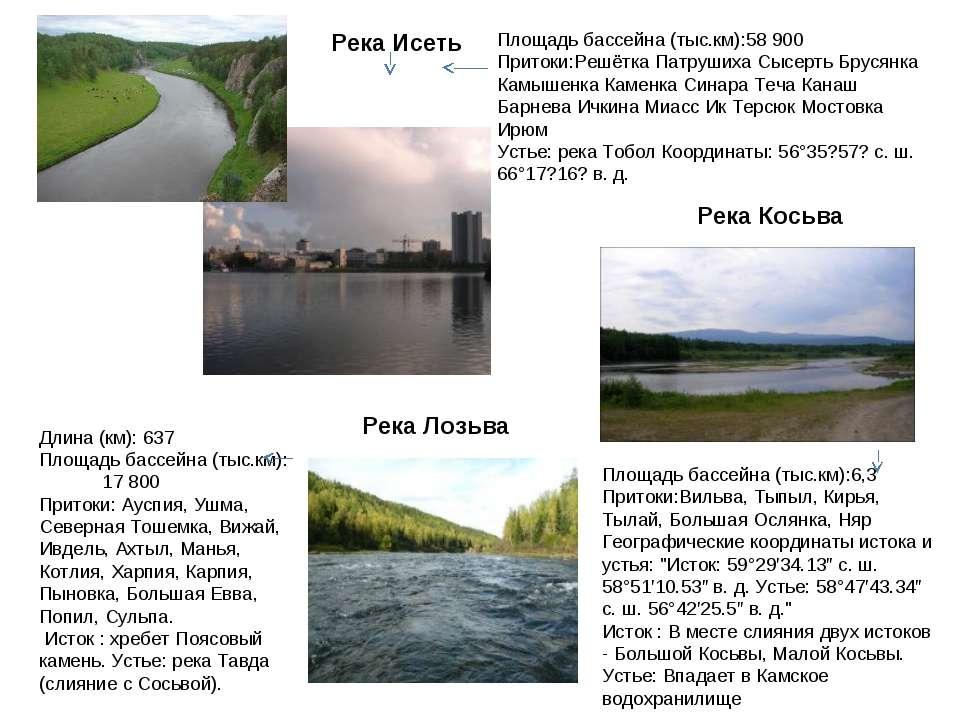 Река Исеть Площадь бассейна (тыс.км):58 900 Притоки:Решётка Патрушиха Сысерть...
